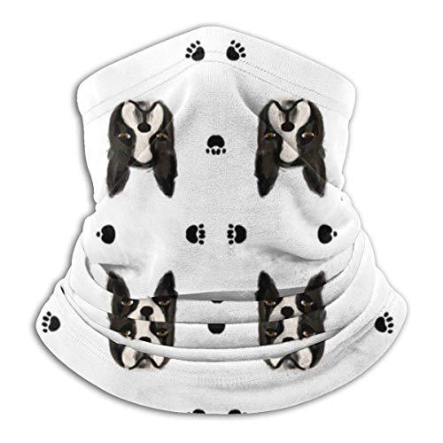 XCVD Confort Edredón Boston Terrier Coordenadas Cojín de microfibra multifuncional para el cuello, protectores faciales deportivos, mascarilla a prueba de viento a prueba de polvo en la boca Masc