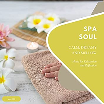 Spa Soul - Calm, Dreamy And Mellow Music For Relaxation And Reflextion, Vol. 06