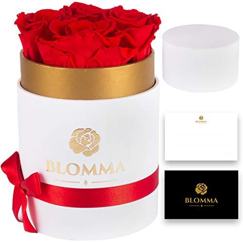 Blomma Rosenbox Ewige Rosen 4 Stück in Einer Flower-Box mit Einer goldfarbenen Manschette,3 Jahre haltbar (Weiß - White)
