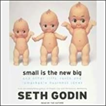 Best small is the new big seth godin Reviews