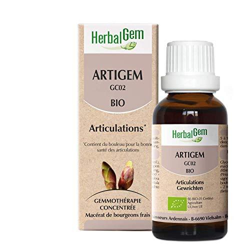 Herbalgem   Artigem Complexe Articulations BIO   Bourgeons de Pin, de Vigne, de Bouleau et de Cassis   50 ml