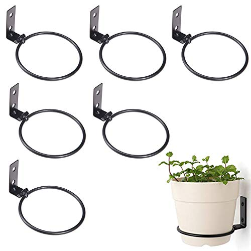 MOLPE Flower Pot Holder Rings Wall Mounted 4 Inch, Collapsable Metal Planter Pots Hook Hangers for Indoor & Outdoor Decorative, Iron Dog Or Pet Bowl Bracket, 6 Pack, Black