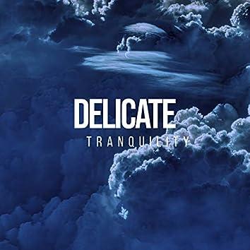 # 1 Album: Delicate Tranquility