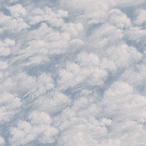 Tempaper CL10591 Removable Peel and Stick Wallpaper, Clouds, Sky Blue