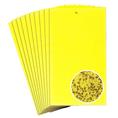 TIANOR 10 Piezas Ambos Lados Amarillo pizarras Trampas Adhes