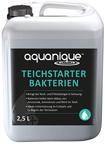 AQUANIQUE Teichstarter Bakterien 2,5 l (für 75.000 l) flüssig für Gartenteiche - wertvolle Starterbakterien Filterbakterien zum Abbau von Schadstoffen ideal zur Teichpflege im Frühjahr