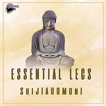 Shijiauomoni (Summer In Deng Feng Mix)