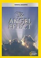 Angel Effect [DVD] [Import]