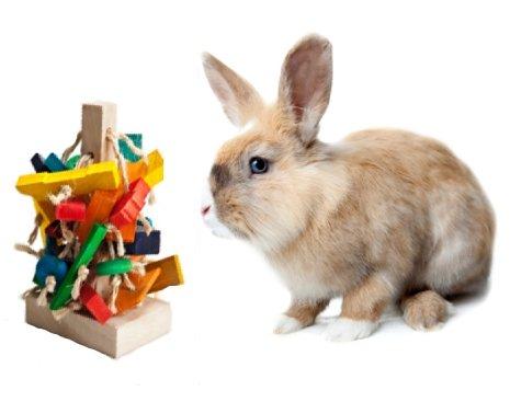 'The Tree' Pet Rabbit Toy