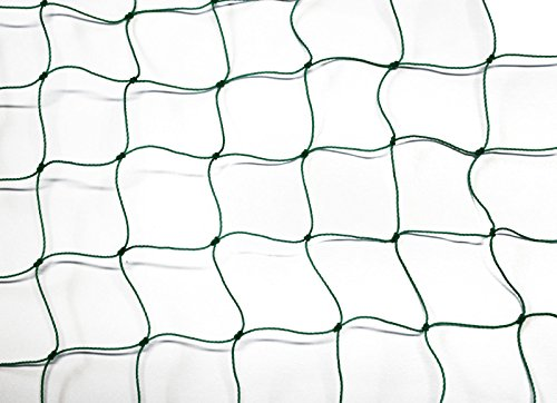 Pieloba Ballfangnetz - Ballnetz - Netz - grün - Masche 5 cm - Stärke: 1,2 mm - Größe: 3,00 m x 10 m