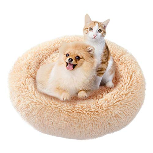 """Dog Calming Bed, Donut Cuddler Round Dog Bed Ultra Soft Washable Dog and Cat Cushion Bed (L(27.5"""" x 27.5""""), Light Gary) Review"""