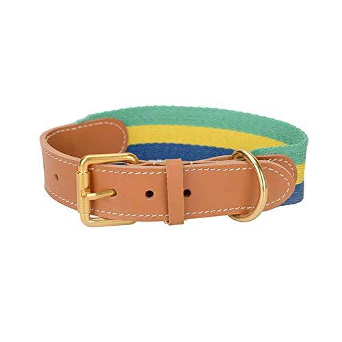 feiling Böhmen Hundehalsband Bunt aus Leder Breit Lederhalsband Verstellbares Haustier Spazierleine 1.2M für Mittelgroße und Große Hunde Hundführleine Lederleine (M, Grün)