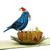 CUTPOPUP Christmas Card Pop Up, Christmas Bluebird 3D Pop-Up Greeting Card, Merry Christmas Card, Mothers Day Card, Fathers Day Card Pop Up