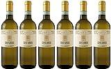 6x Grigioluna Pinot Grigio delle Venezie 2019 - Weingut Cecilia Beretta, Veneto - Weißwein