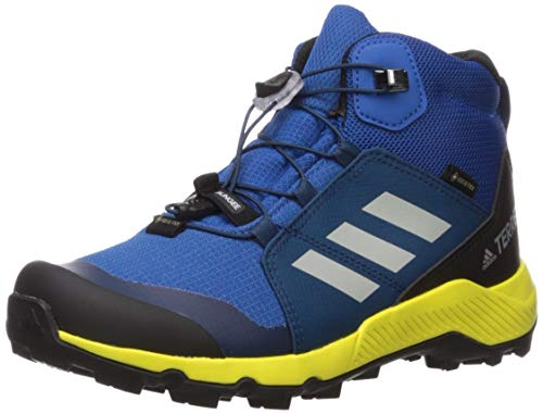 adidas outdoor Terrex MID GTX Kids Hiking Shoe Boot, Blue Beauty/Grey one/Shock Yellow, 2.5 Child US Big