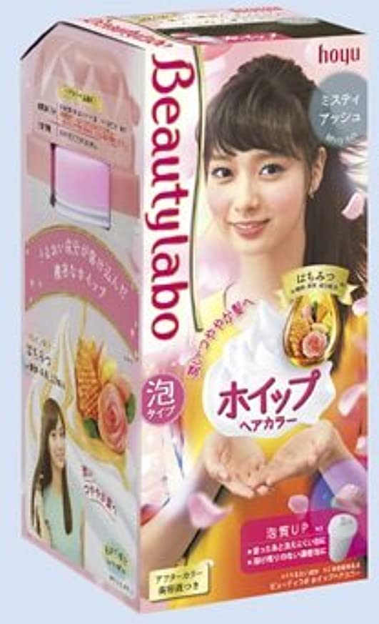 ファンブル拘束する賞賛BeautyLabo(ビューティラボ) ホイップヘアカラー ミスティアッシュ × 5個セット