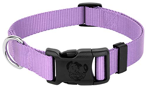 Country Brook Petz - 25+ Vibrant Colors - American Made Deluxe Nylon Dog Collar with Buckle (Medium, 3/4 Inch Wide, Lavender)