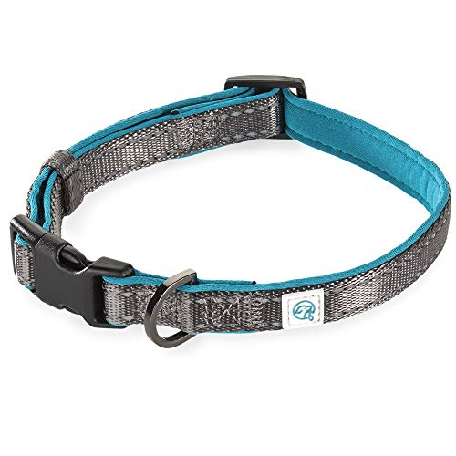 Embark Adventure Dog Collar with Soft Padded Neck, Matching Set with The Adventure Leash and Harness, Pet Collars for Most Breeds (Small, Blue)