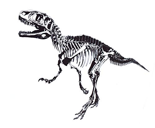 Nacnic Vinilo Decorativo Pegatina de Pared Adhesiva T-Rex para Habitac