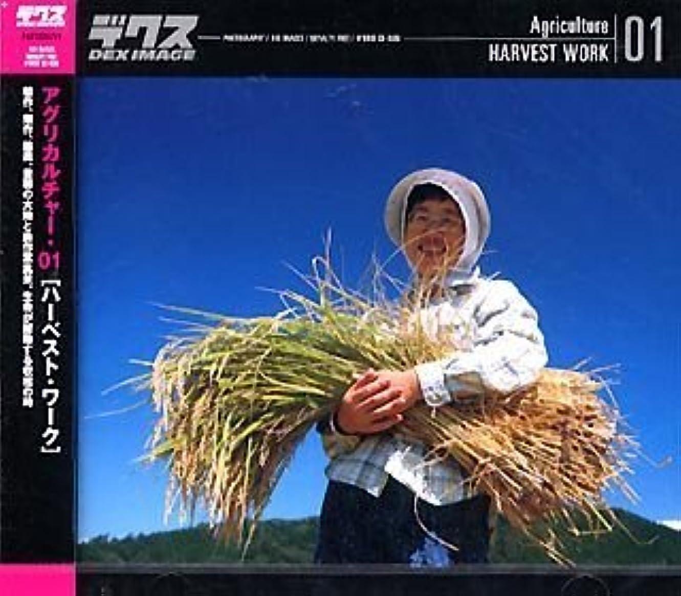量で始めるベテランAgriculture 01 Harvest Work