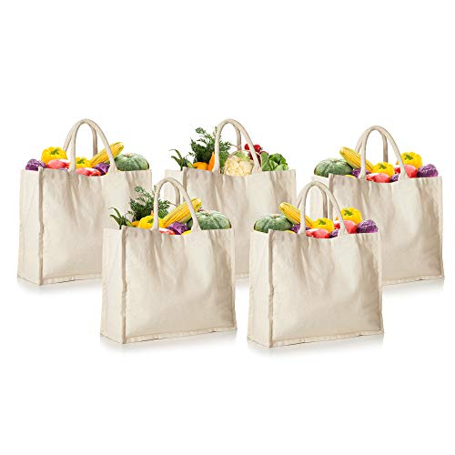5 Pack Canvas Grocery Bags 100% Canvas Shopping Bags Reusable Washable with Cotton Web Handle 165 Inches Wide 13 inches tall 7 inches wide Gusset Ivory Colour