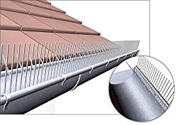 taubenabwehr ungeziefer im haus. Black Bedroom Furniture Sets. Home Design Ideas