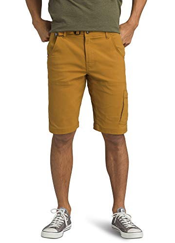 prAna - Men's Stretch Zion Lightweight, Water-Repellent Shorts for Hiking and Everyday Wear, 12