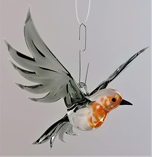 Glasvogelwelt Hängevogel, Rotkehlchen