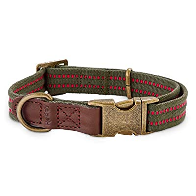 Reddy Olive Webbed Dog Collar, Large, Green