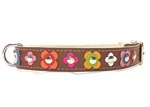 Superpipapo Hunde-Halsband, Handmade Braun Leder für Kleine und Mittelgroße Hunde, Ausgefallen Vintage Design Floral mit Bunt Farbig Blumen, 40 cm S: Halsumfang 30-35 cm, Breit 15mm