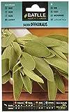 Semillas Aromáticas - Salvia officinalis - Batlle