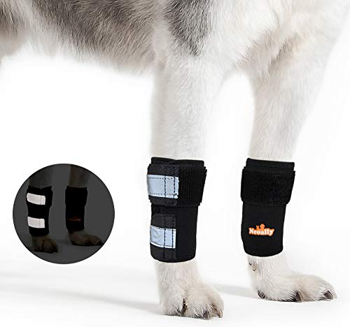 NeoAlly Pair Front Leg Braces for Dog & Cat Canine Carpal Support with Safety Reflective Straps for Carpus and Wrist Joint Pain and Loss of Stability from Arthritis - 3 Colors (Black XXS/XS Pair)