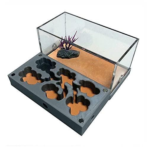 Hormiga Plana De Acrílico 3D,Nido De Hormigas Ecológicas Con Área De Alimentación Casa De Hormigas De Hormigón De Hormigón Para Mascotas Taller De Hormiguero Hidratante Piscina De Agua Humectante-8 Es