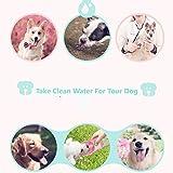 Zoom IMG-2 amayga bottiglia acqua per cani