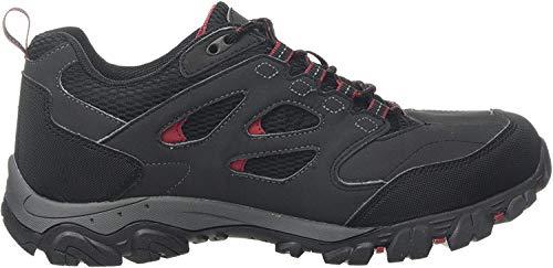 Regatta Holcombe Iep Low Rise Hiking Boot, Stivali da Escursionismo Uomo, Grigio (Ash/Rio Red 21n), 48 EU