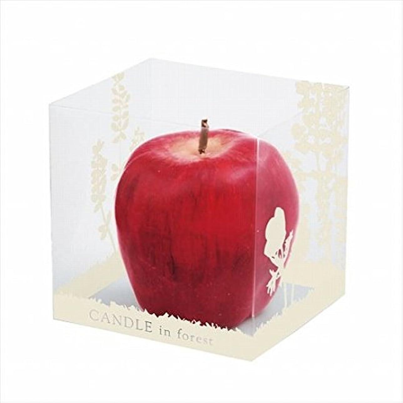 遠え用語集暖かくカメヤマキャンドル(kameyama candle) アップルキャンドル