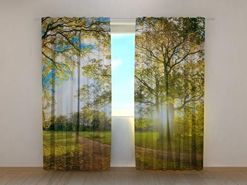 Wellmira Fotogardinen, Vorhang mit Fotodruck, Fotovorhang mit Motiv, Bedruckte Gardine, Maßanfertigung (Gabardine, 145x200 cm)
