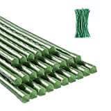 ZJIA 2.5 FT Garden Stakes 25 Pack Plant Support Stakes Sturdy Tomato Stakes with 100 Ties