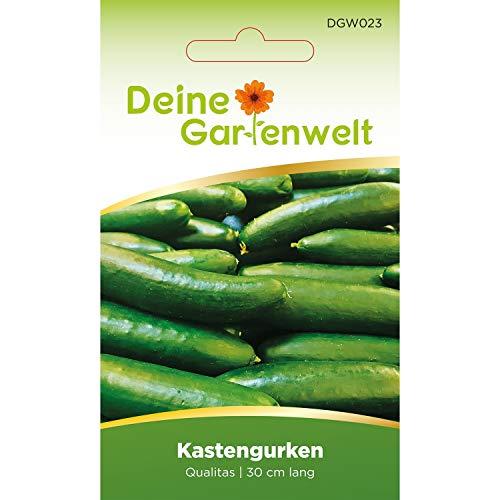 Kastengurke Qualitas Gurkensamen | Samen für Gurken | Salatgurke | Salatgurkensamen