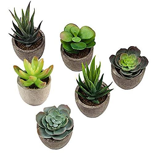 SHACOS 6er Set Künstliche Sukkulenten Pflanzen mit Töpfen 6 Stücke Kunstpflanze Kunstblume Deko für Hausgarten,Tische, Balkon, Büro
