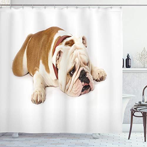 Ambesonne English Bulldog Shower Curtain, Sad and Tired Bulldog Laying Down European Pure Breed Animal Photography, Cloth Fabric Bathroom Decor Set with Hooks, 70' Long, Brown Cream