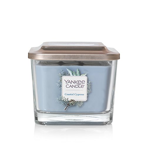 Yankee Candle Company Elevation Collection with Platform Lid, Medium 3-Wick Candle, Coastal Cypress