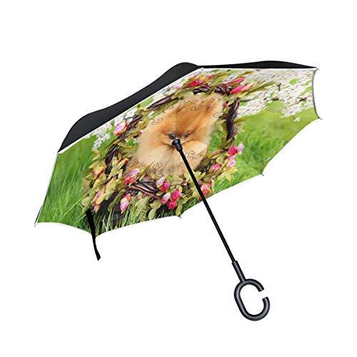 Paraguas invertido con diseño de perro en el parque, grande de doble capa para el aire libre y el sol del coche reversible