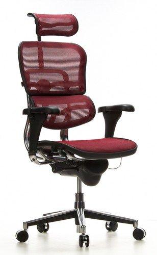 Unbekannt hjh Office 652170 Chefsessel ERGOHUMAN Netzstoff Weinrot hochwertiger Bürodrehstuhl mit Vollausstattung