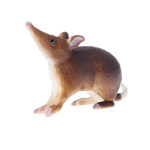 D DOLITY Juguete Educativo Escolar Figura Realista de Animal Modelo Caballo/ Cabra/León/Togre/Bulldog/Ganso/Kaola/Alpaca - Bandicoot Rata