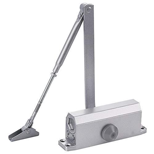 Cierrapuertas - Aluminio hidráulico Buffer cierre automático con brazo telescópico ajustable que se puede instalar en la puerta de 40-60kg Familia Hotel Apartamento ( Color : Positioning funct