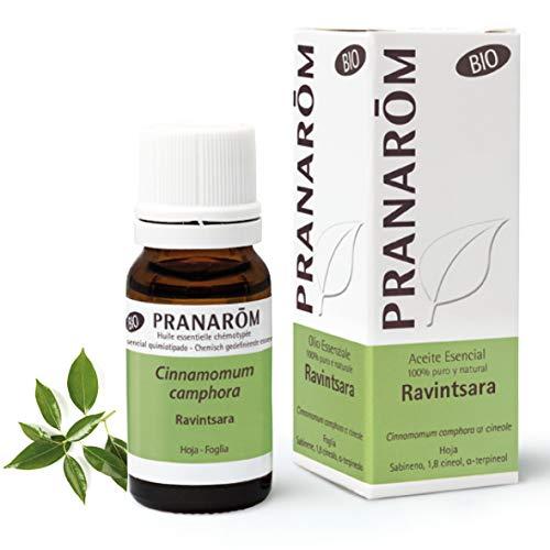 Pranarom Aceite Esencial de Ravintsara Bio, Hoja, 10 Mililitros