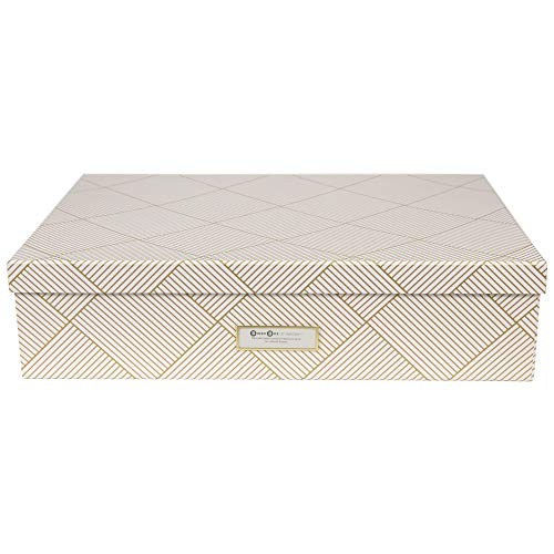 Bigso Box of Sweden - Caja clasificadora con 12 Compartimentos - Caja con Tapa y asa para Accesorios, artículos de Oficina, cosméticos, etc. - Caja de almacenaje de Tablero de Fibra y Papel