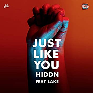 Just Like You (feat. Lake)