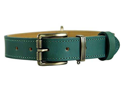 Tellpet Italy Full-Grain Leather Padded Dog Collar, Teal, Medium